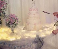 Led twinkle organza wedding cake table
