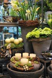 Define los elementos para tu jardín