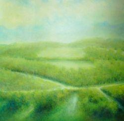 Landschap van Jaap
