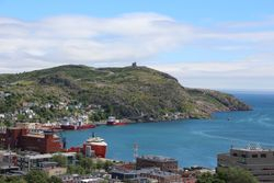 Saint Johns harbour from The Rooms museum