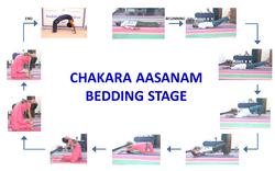 Chakara Aasanam