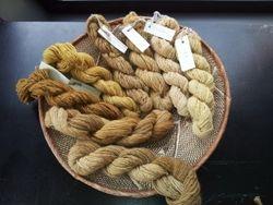 Natalie Geard's natural dyed yarns