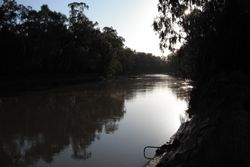 Murrumbidgee River near Griffith