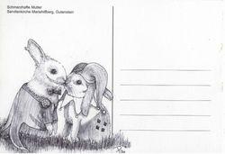 Joker & Harely Bunny