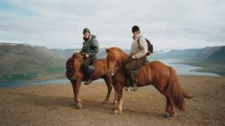 Icelandic horses, tiny but strong
