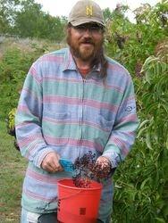 The happy elderberry gatherer