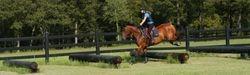 Gibbes Farm - Sept 2007