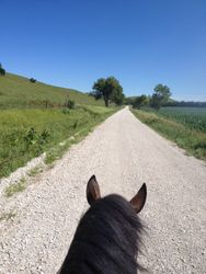 Sunny ride down the road
