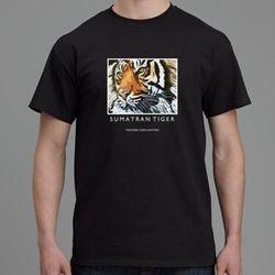 Nias (sumatran tiger)