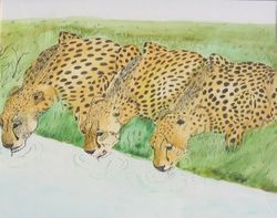 Three Cheetahs