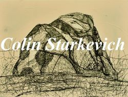 """Erratic Drawing - Rattlesnake (12 by 16"""" mixed media on canvas)"""