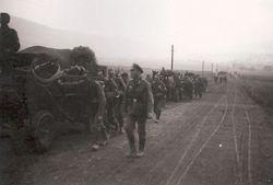 Wagon-Trains of Supplies :