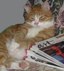 Anthony takes nap while reading...
