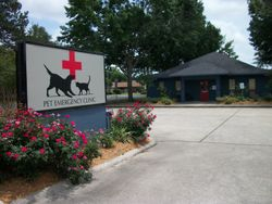 Clinic street view