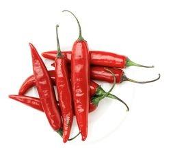 Ashleigh aka Hot Pepper
