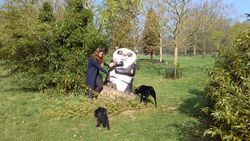 Visiting the Nowton Park Panda