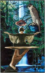 "February 11, 2006: Collage #24: ""Blue Wisdom"""