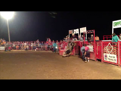 Meigs County Rodeo