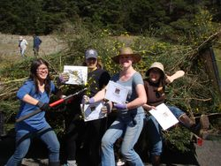 AAZK members, battling scotch broom