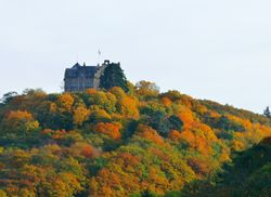 Blick auf Burg Rheineck