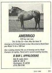 Amerrigo