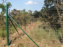 Freestand Electric Fence in the bush