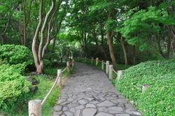 Path, Japanese Tea Garden