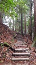 The continuing climb