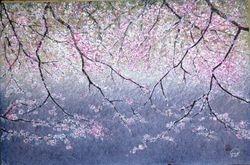Cherry Blossom B