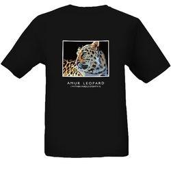 Xizi (Amur leopard)
