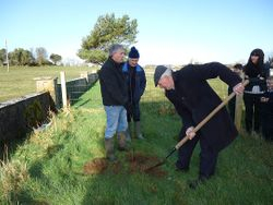 Johney Byrne and Liam Donnelly planting a rowan tree in our Biodiversity garden for Tree Week 2014