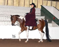 Side-Saddle Jen and Khahina (1/2 Arabian Pinto)