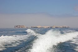 Returning to Paracas