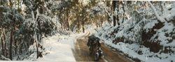 1993 Howard Moffit's Bike