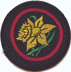 Daffodil Patrol Badge