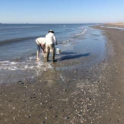 Collecting intertidal beach samples