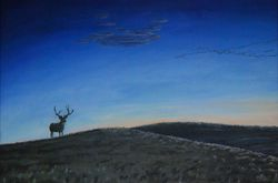 "Dawn of a Prairie Night (20 by 30"" oil on canvas) Collection of Artist"