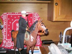 cowboy owned by Steve T.