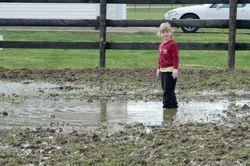 Chloe in the mud ... again