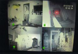 Infrared camera recorded throughout