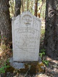 Albert Yaudes
