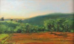 Carbondale Sunrise