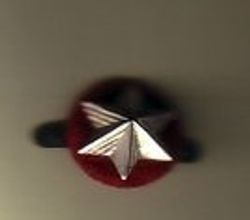 Ranger Service Star