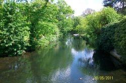 River Little Ouse, Brandon