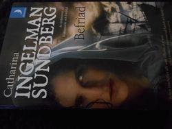 Bok med Vikingatema/Book with Viking theme.