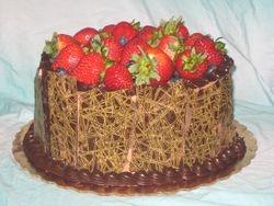 Chocolate Transfers and Fruit Cake