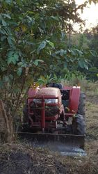 Tractor at Farm