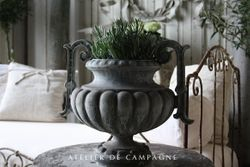 #22/056 Cast Iron Jardiniere with Lavender