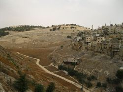 Mount of Olives with Kidron Valley