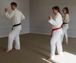 Sifu Matt Arsenault teaches the 3rd Fundamental Form